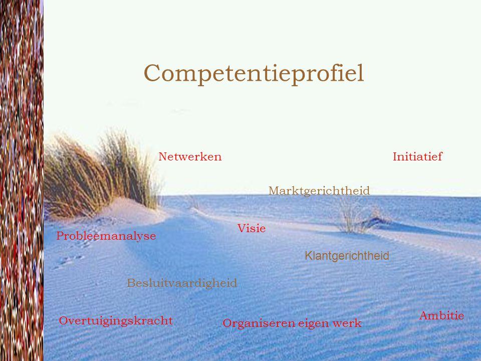 Competentieprofiel Netwerken Initiatief Marktgerichtheid Visie