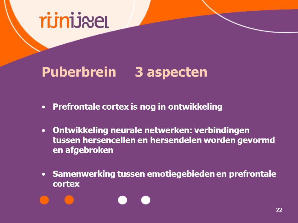 Puberbrein 3 aspecten Prefrontale cortex is nog in ontwikkeling