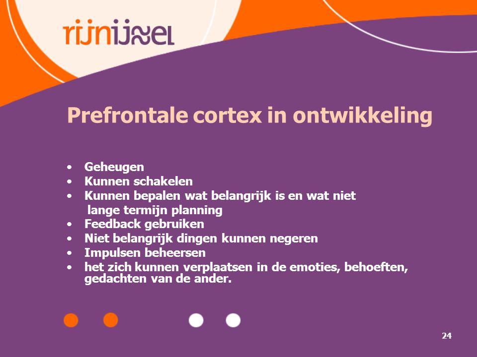 Prefrontale cortex in ontwikkeling