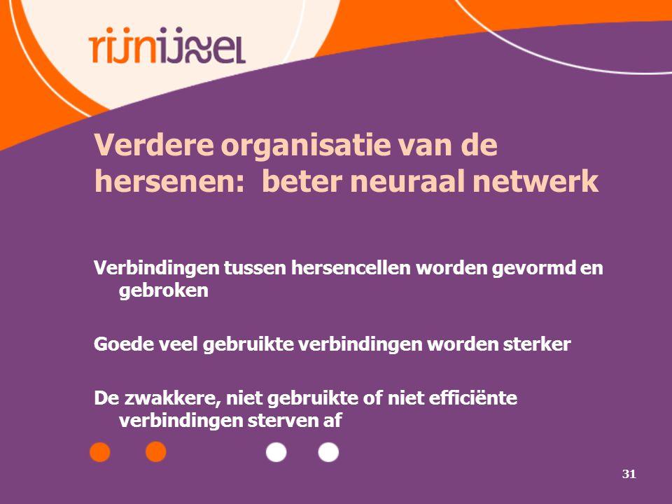 Verdere organisatie van de hersenen: beter neuraal netwerk