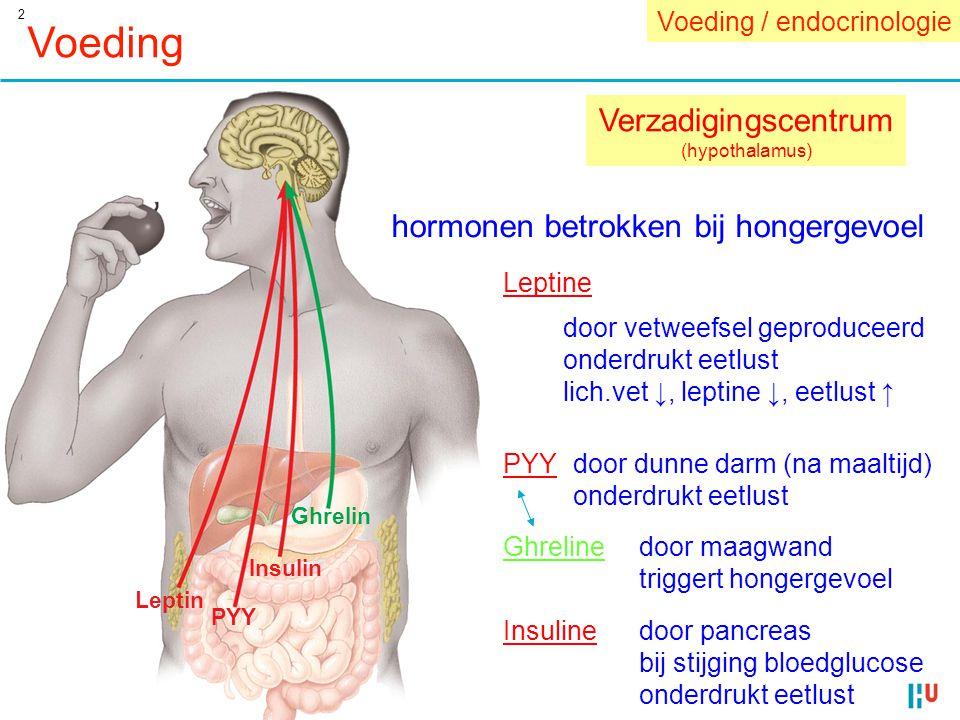 Voeding Verzadigingscentrum hormonen betrokken bij hongergevoel