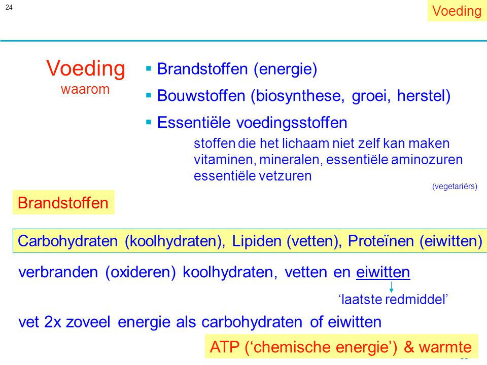 Voeding Brandstoffen (energie)