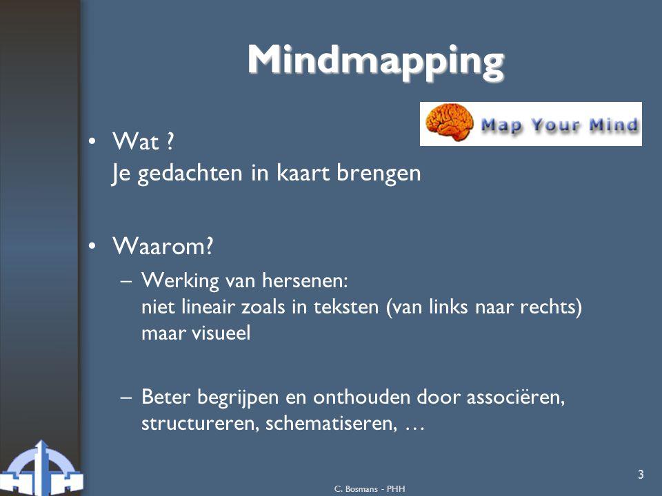 Mindmapping Wat Je gedachten in kaart brengen Waarom