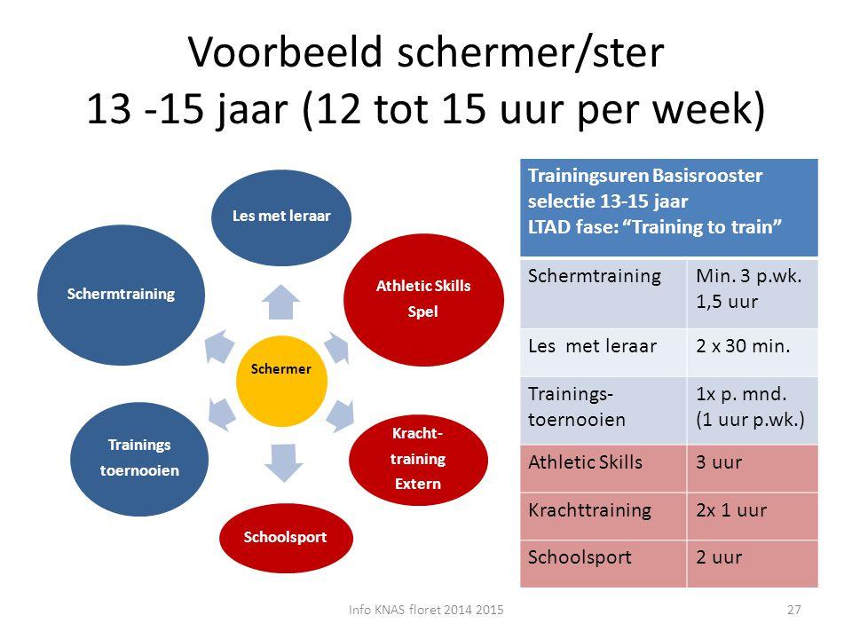 Voorbeeld schermer/ster 13 -15 jaar (12 tot 15 uur per week)