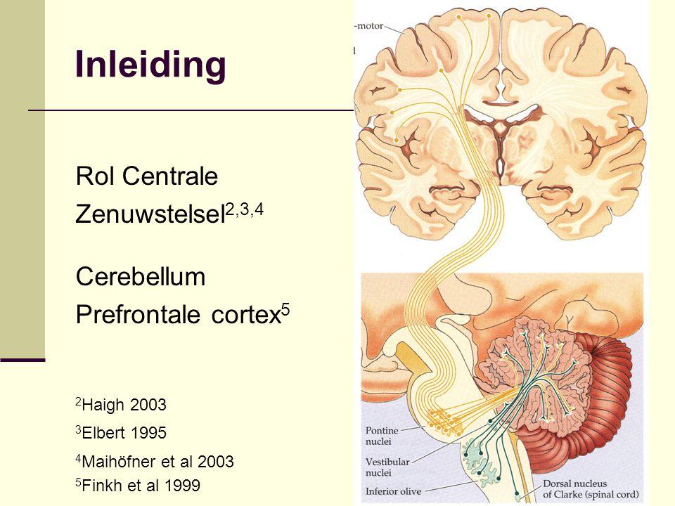 Inleiding Rol Centrale Zenuwstelsel2,3,4 Cerebellum