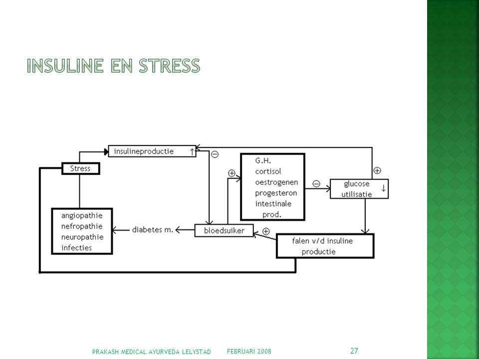 Insuline en stress PRAKASH MEDICAL AYURVEDA LELYSTAD FEBRUARI 2008