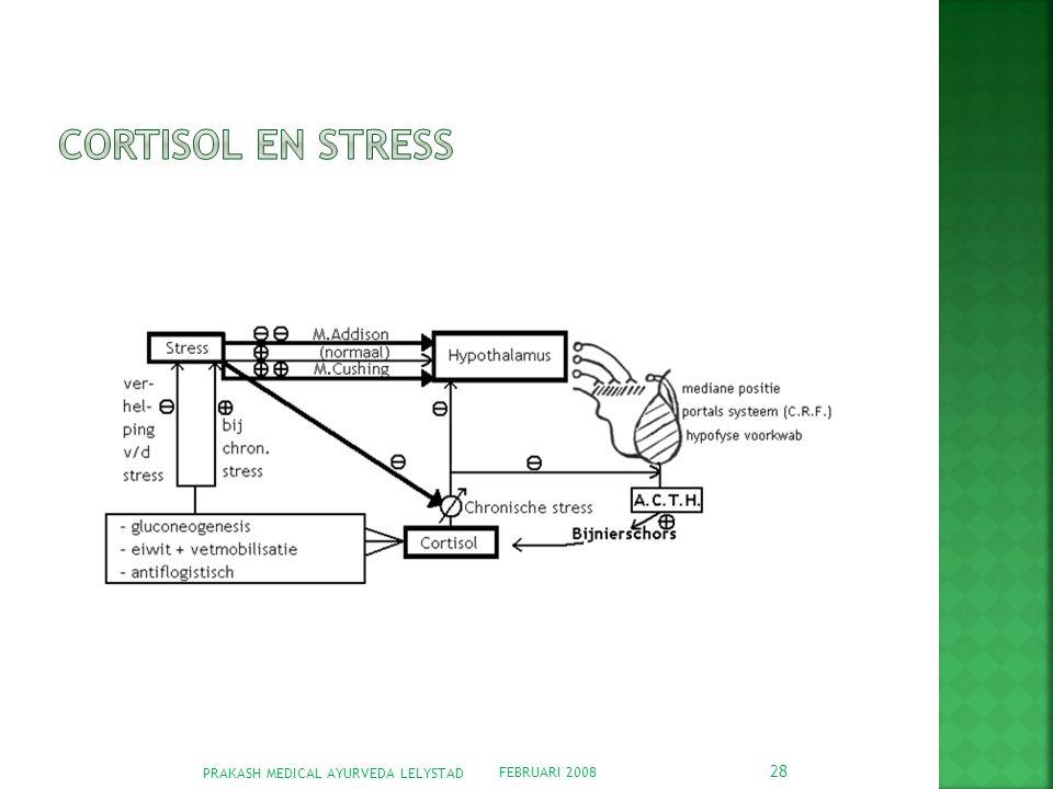 Cortisol en stress PRAKASH MEDICAL AYURVEDA LELYSTAD FEBRUARI 2008