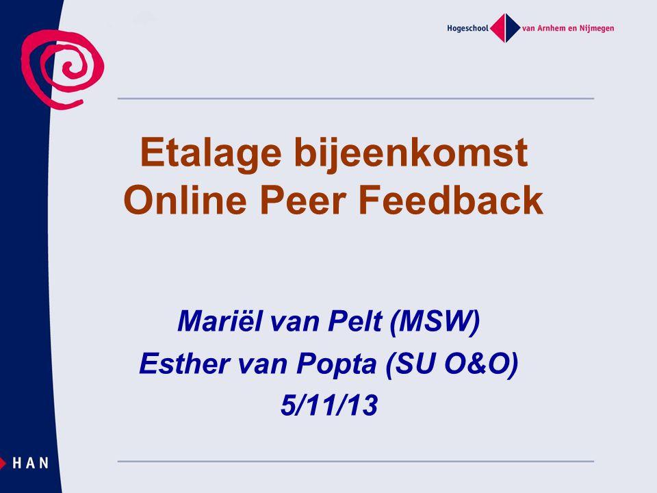 Etalage bijeenkomst Online Peer Feedback