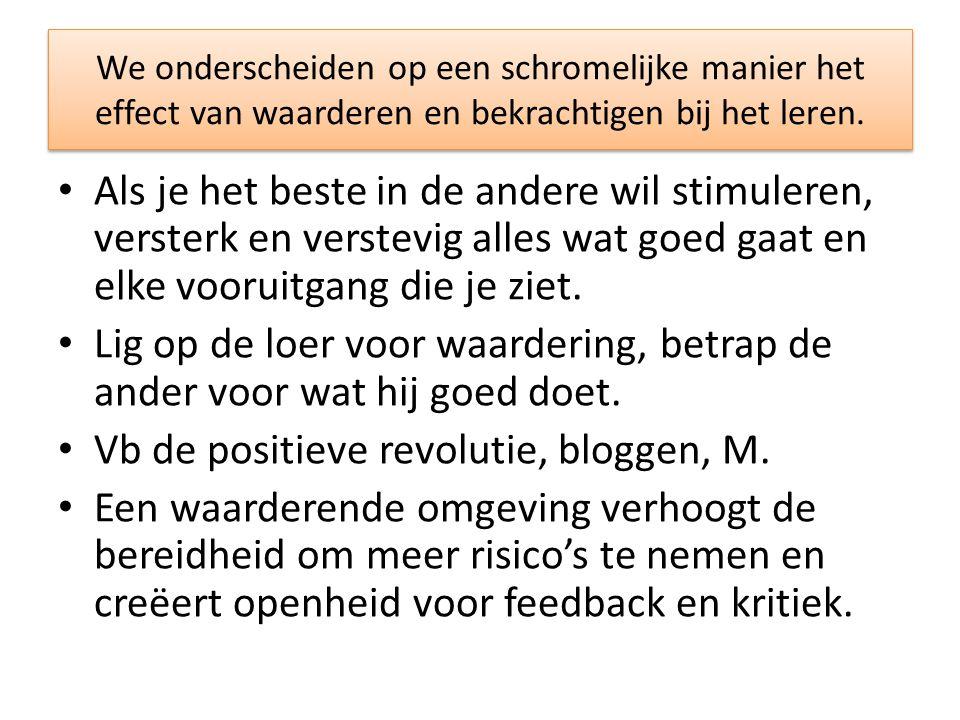 Vb de positieve revolutie, bloggen, M.