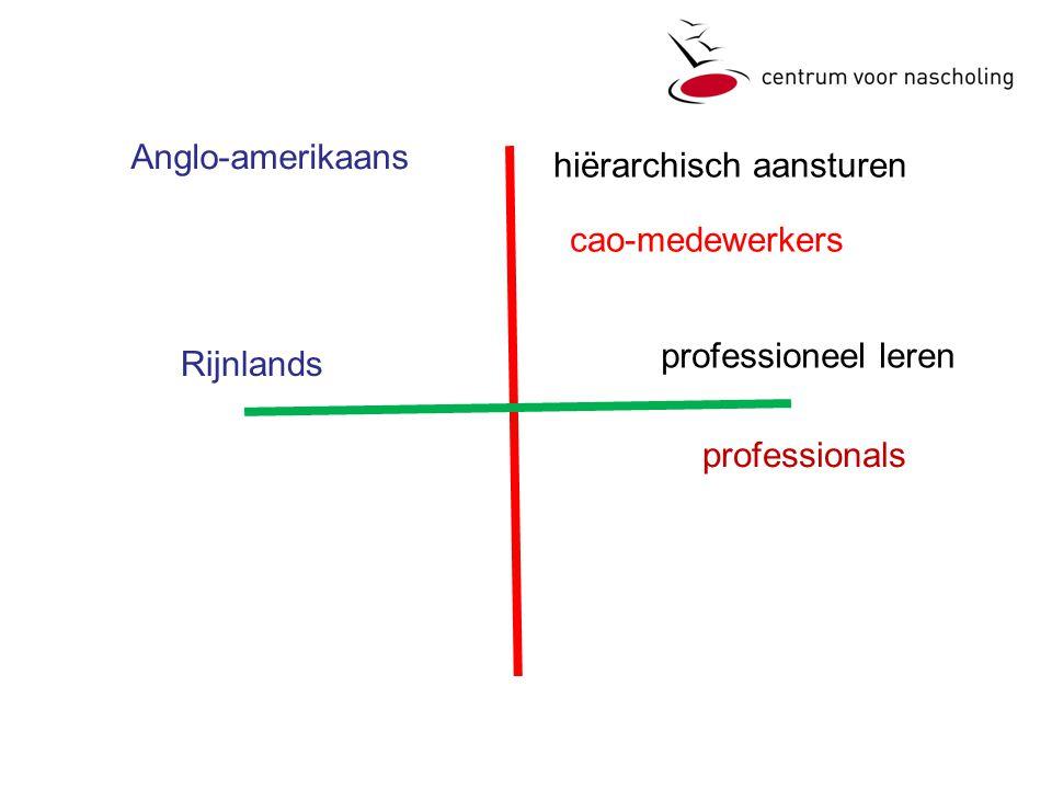 Anglo-amerikaans hiërarchisch aansturen cao-medewerkers professioneel leren Rijnlands professionals