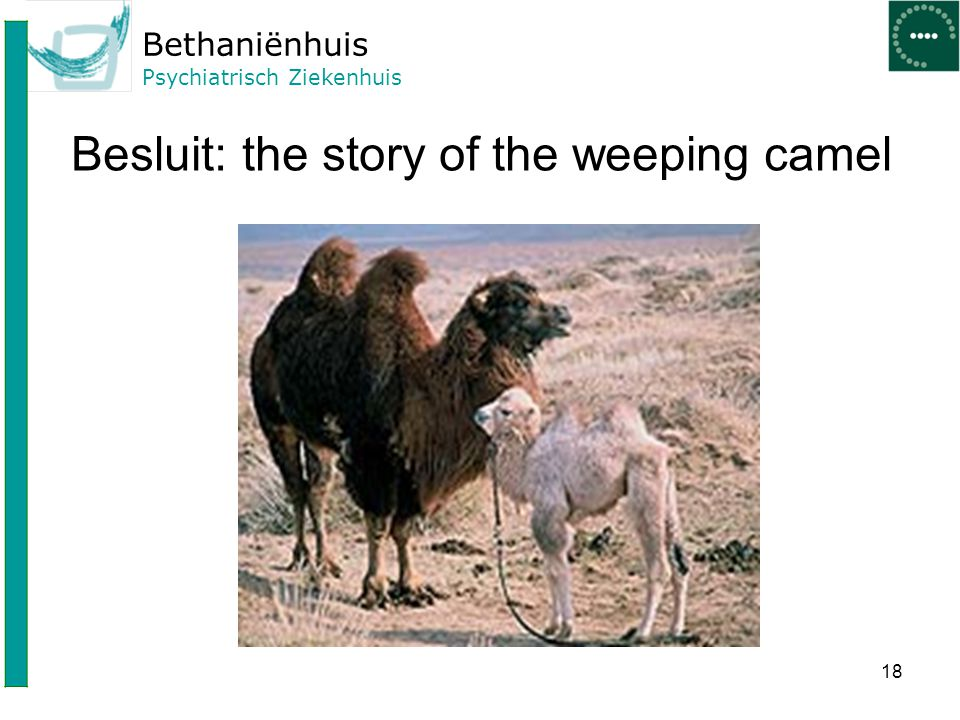 Besluit: the story of the weeping camel