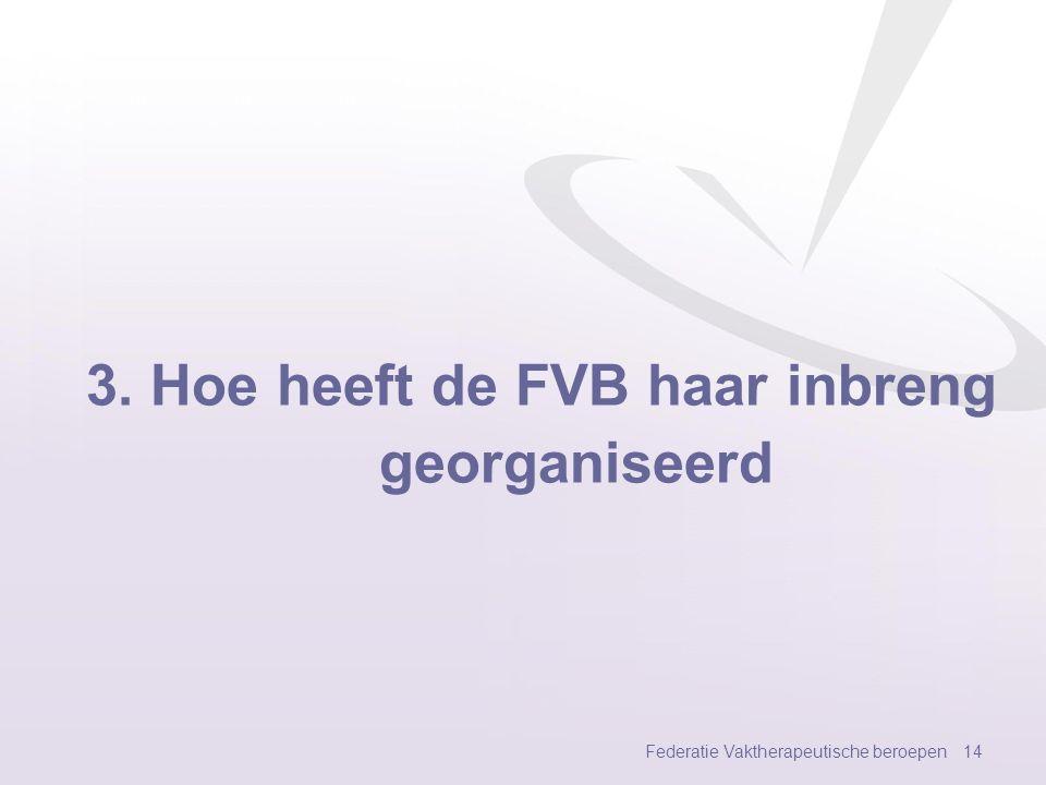 3. Hoe heeft de FVB haar inbreng georganiseerd