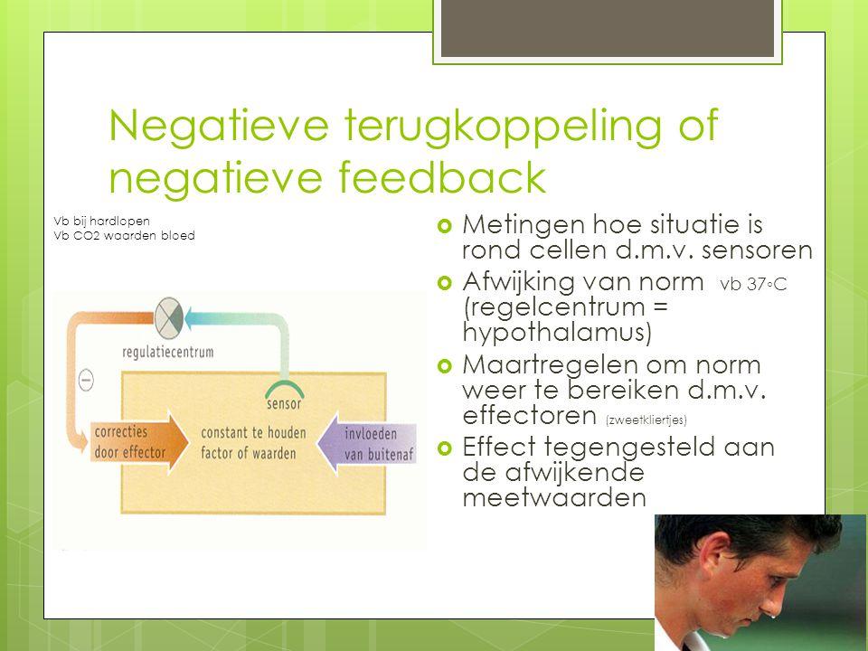 Negatieve terugkoppeling of negatieve feedback
