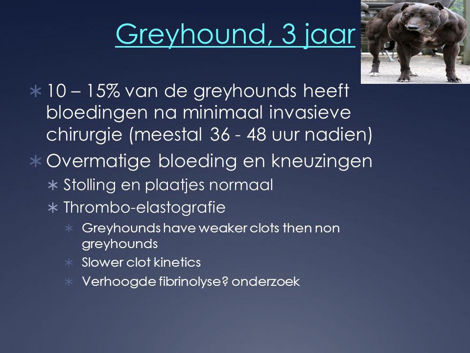 Greyhound, 3 jaar 10 – 15% van de greyhounds heeft bloedingen na minimaal invasieve chirurgie (meestal 36 - 48 uur nadien)