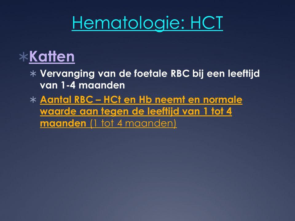 Hematologie: HCT Katten