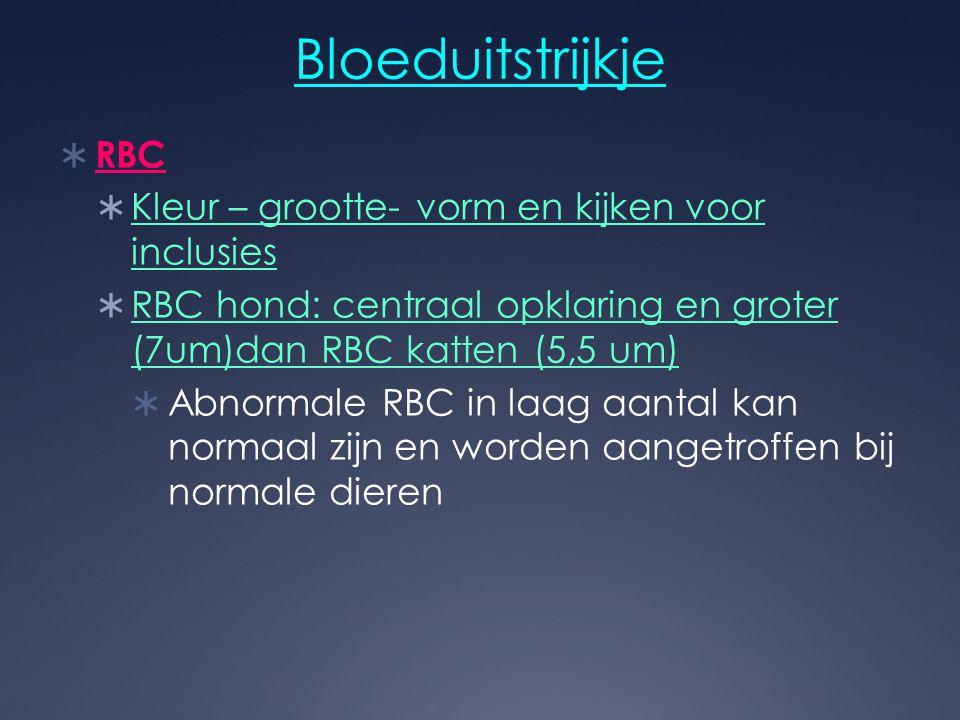 Bloeduitstrijkje RBC Kleur – grootte- vorm en kijken voor inclusies