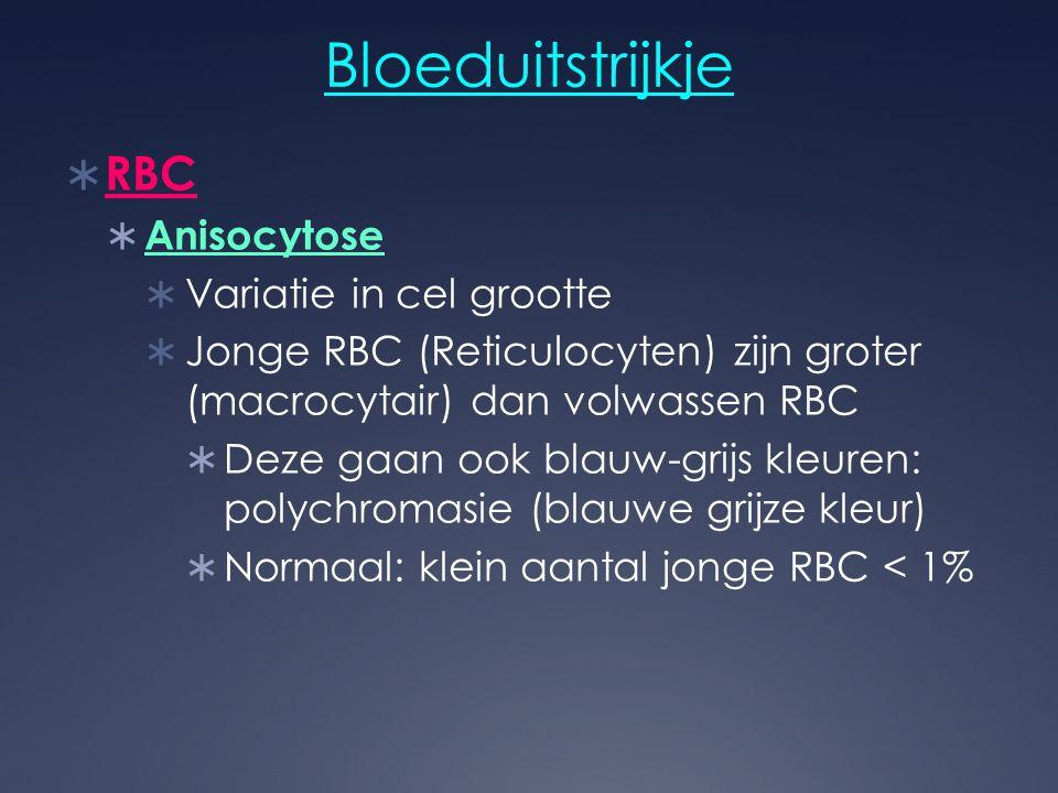 Bloeduitstrijkje RBC Anisocytose Variatie in cel grootte