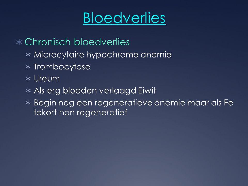 Bloedverlies Chronisch bloedverlies Microcytaire hypochrome anemie