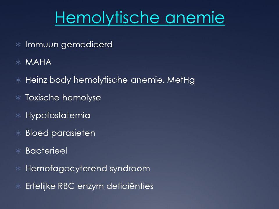 Hemolytische anemie Immuun gemedieerd MAHA