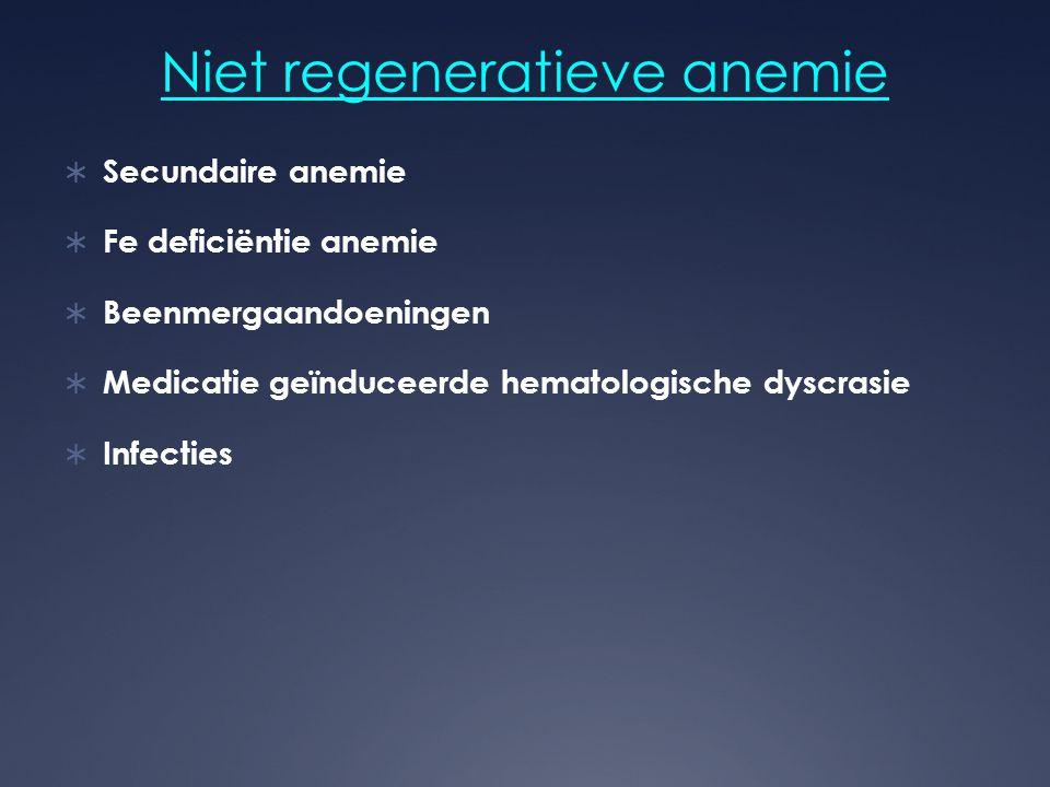 Niet regeneratieve anemie