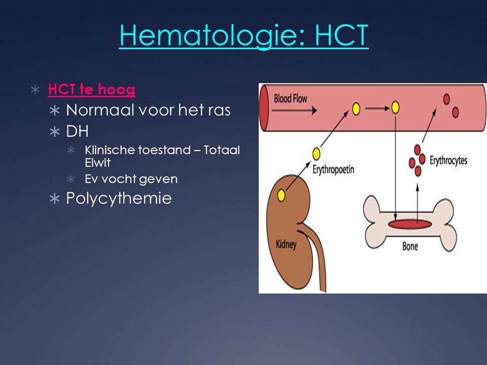 Hematologie: HCT Normaal voor het ras DH Polycythemie HCT te hoog