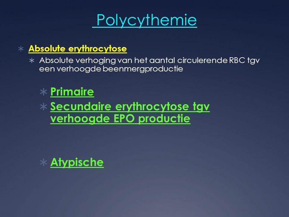 Polycythemie Primaire