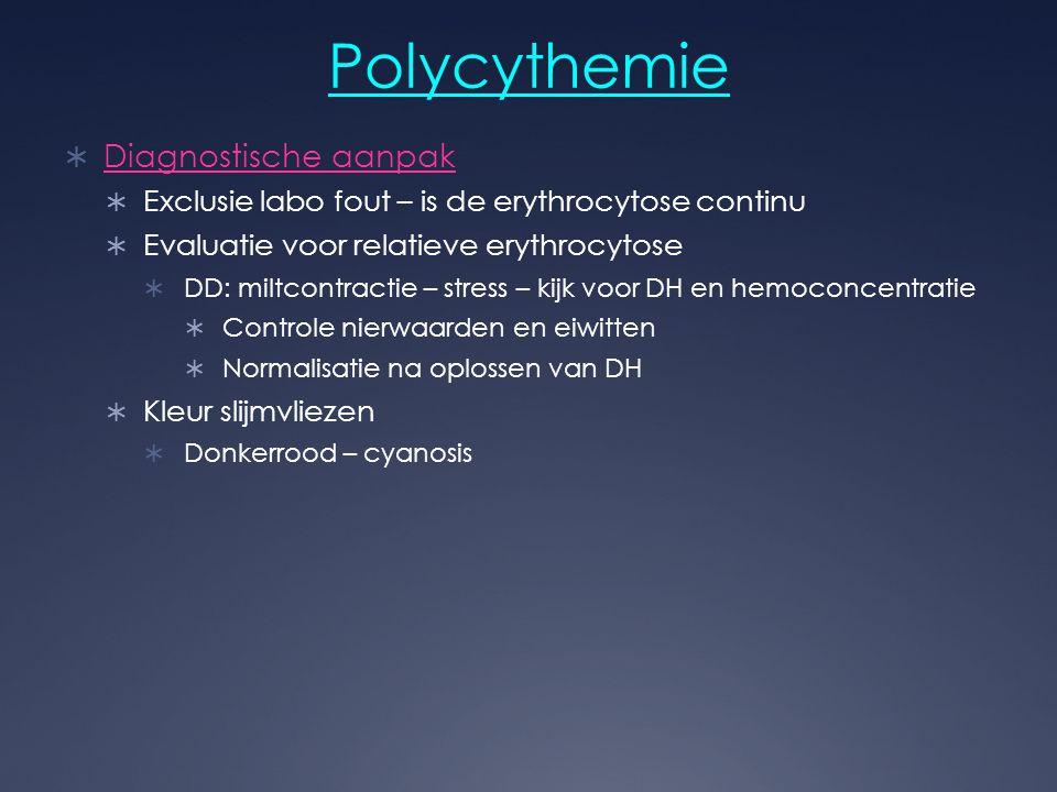 Polycythemie Diagnostische aanpak