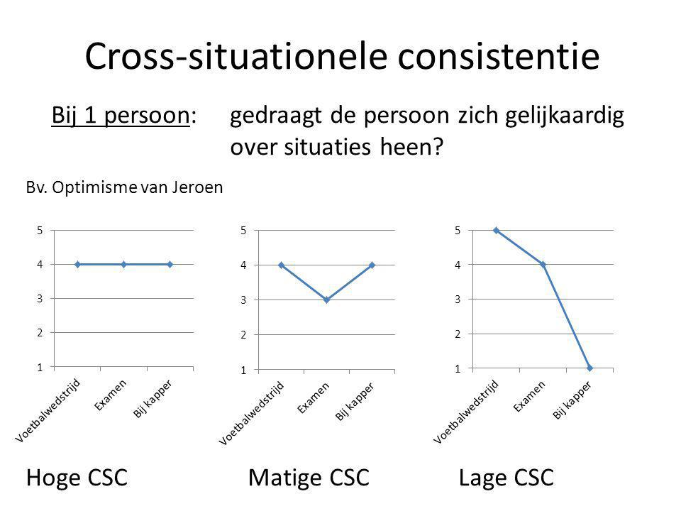 Cross-situationele consistentie