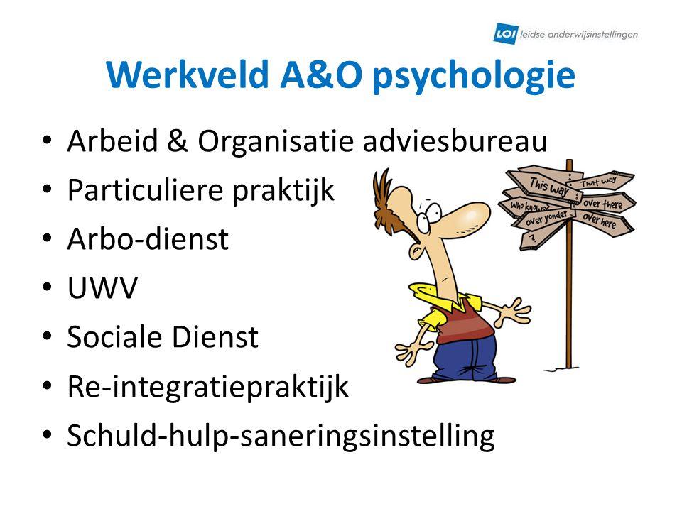 Werkveld A&O psychologie