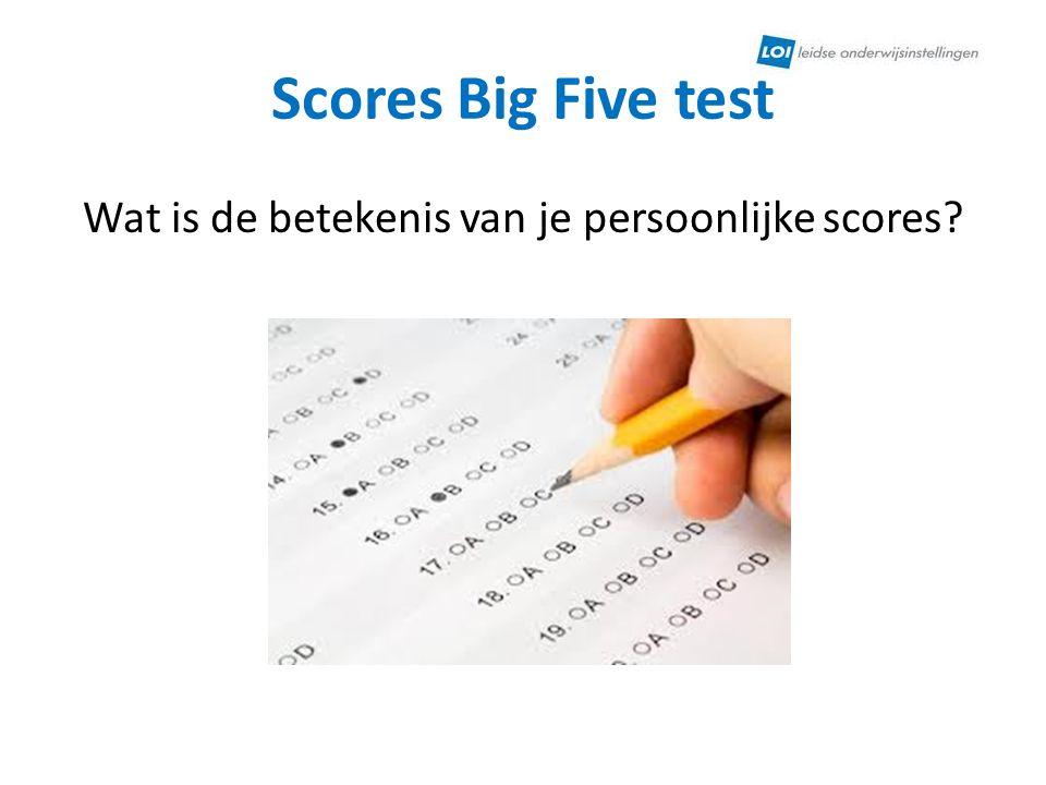 Wat is de betekenis van je persoonlijke scores