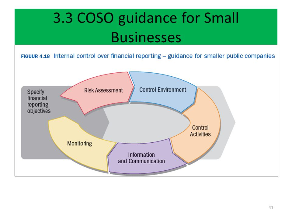 3.3 COSO guidance for Small Businesses