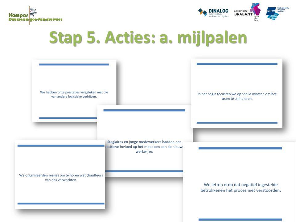 Stap 5. Acties: a. mijlpalen