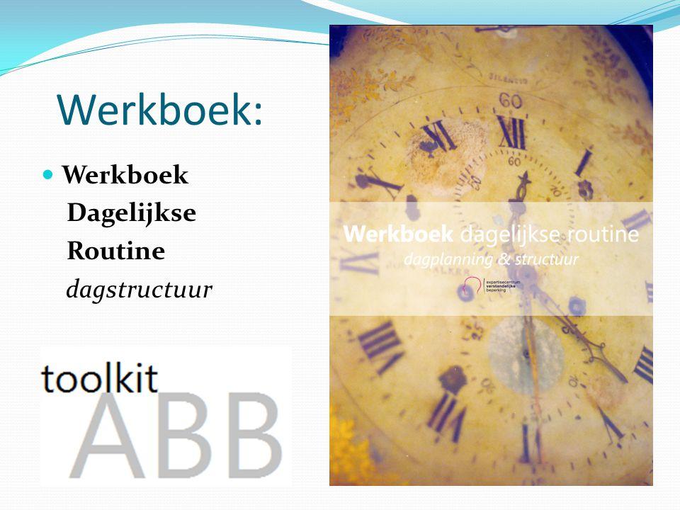 Werkboek: Werkboek Dagelijkse Routine dagstructuur Uit de praktijk!