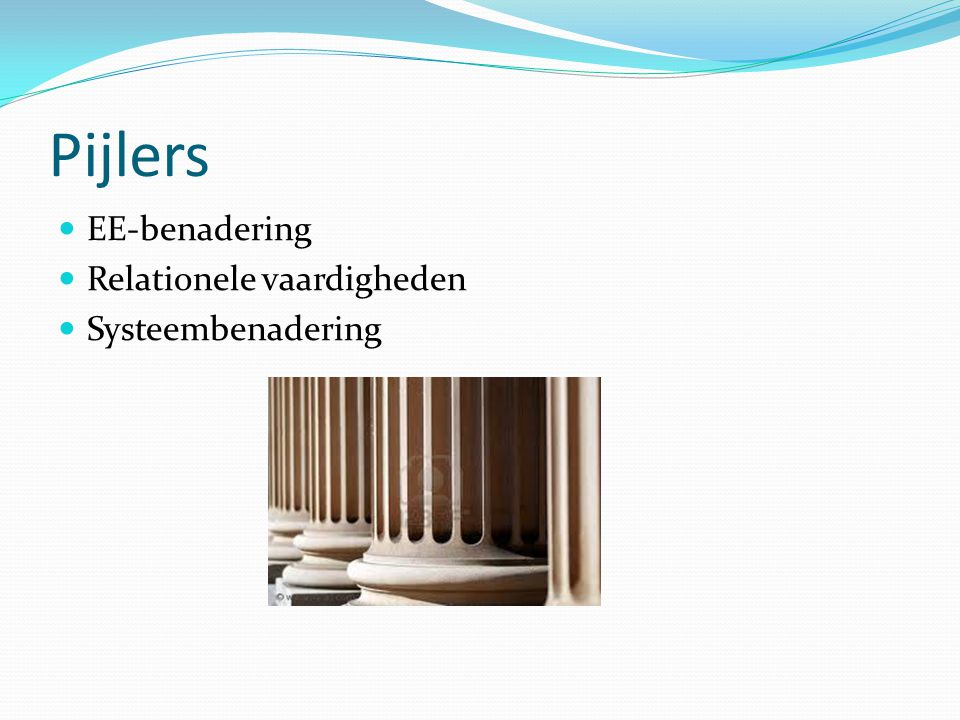 Pijlers EE-benadering Relationele vaardigheden Systeembenadering