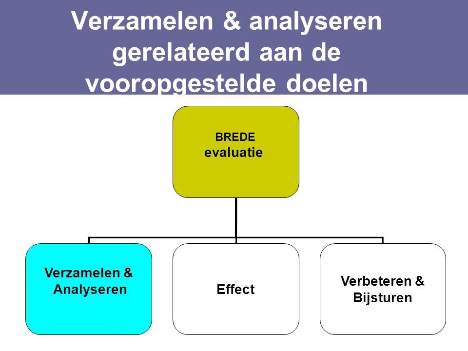 Verzamelen & analyseren gerelateerd aan de vooropgestelde doelen