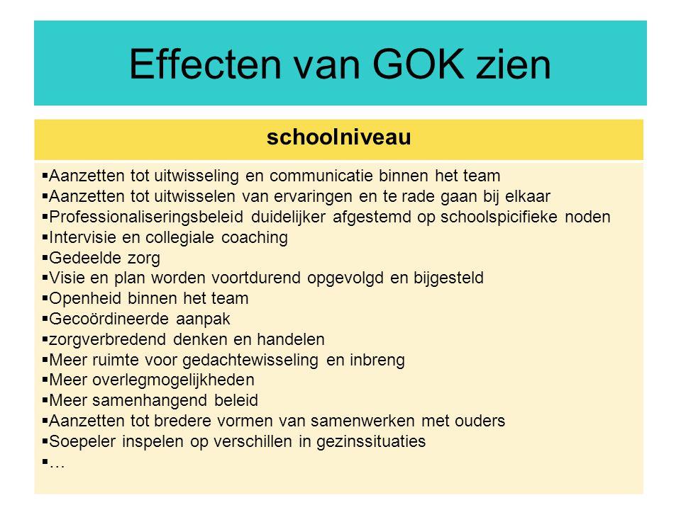 Effecten van GOK zien schoolniveau
