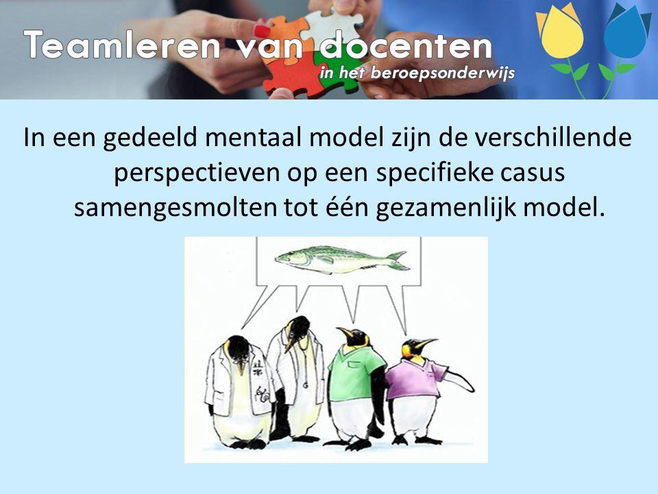In een gedeeld mentaal model zijn de verschillende perspectieven op een specifieke casus samengesmolten tot één gezamenlijk model.