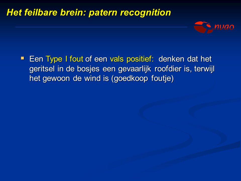 Het feilbare brein: patern recognition