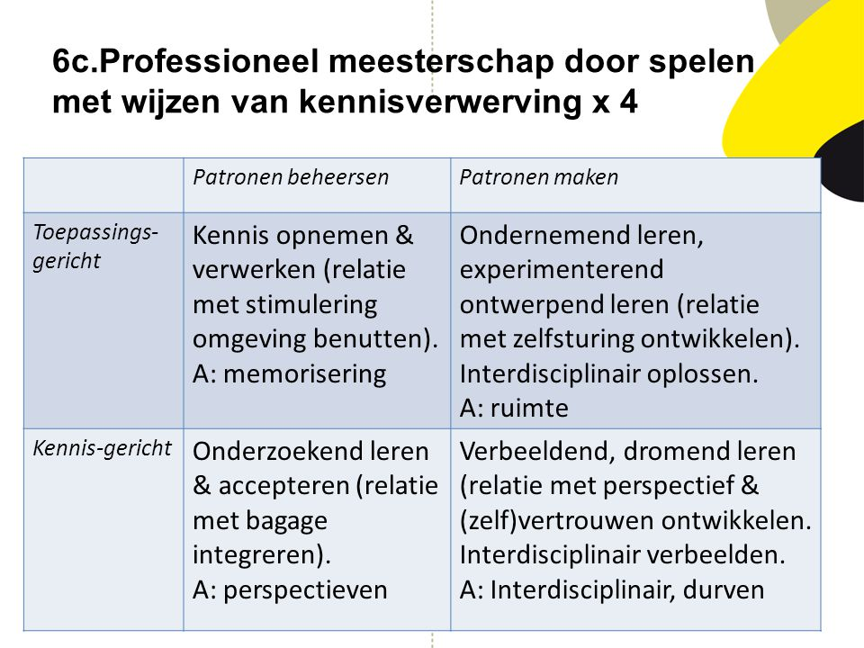 6c.Professioneel meesterschap door spelen met wijzen van kennisverwerving x 4