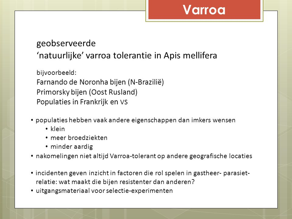 Varroa geobserveerde 'natuurlijke' varroa tolerantie in Apis mellifera
