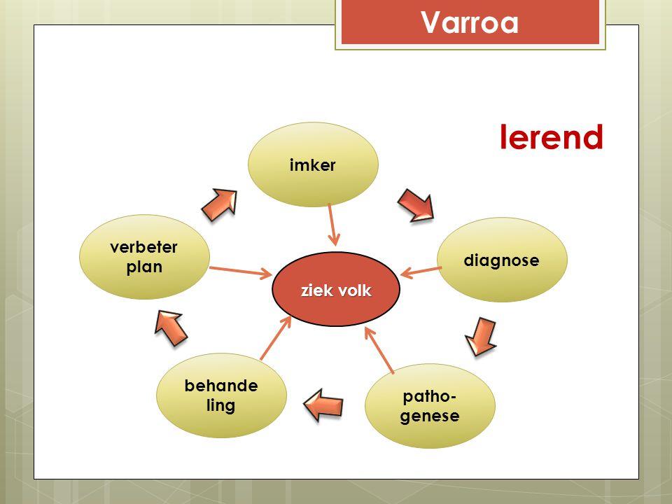 lerend Varroa imker verbeterplan diagnose ziek volk behandeling