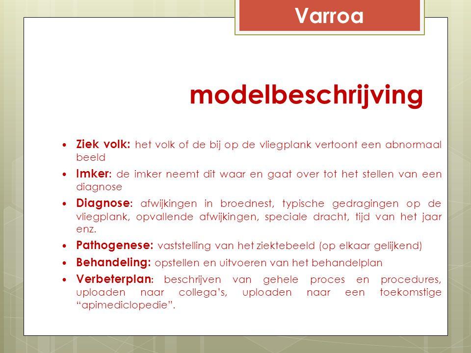 modelbeschrijving Varroa