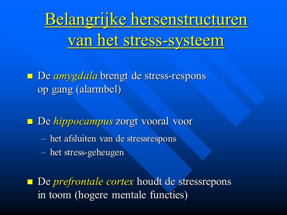 Belangrijke hersenstructuren van het stress-systeem