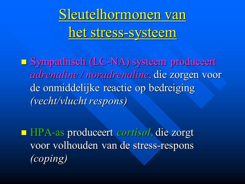 Sleutelhormonen van het stress-systeem