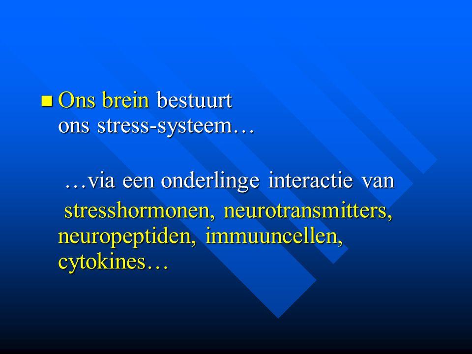 Ons brein bestuurt ons stress-systeem…
