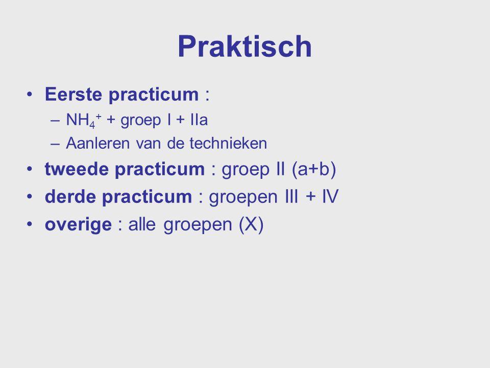 Praktisch Eerste practicum : tweede practicum : groep II (a+b)