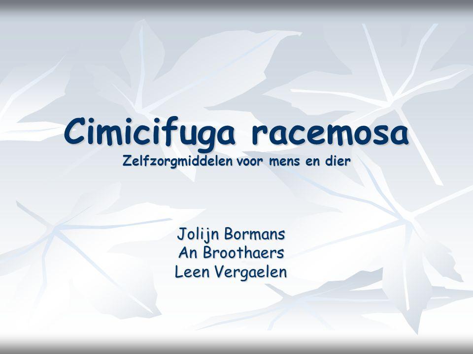 Cimicifuga racemosa Zelfzorgmiddelen voor mens en dier
