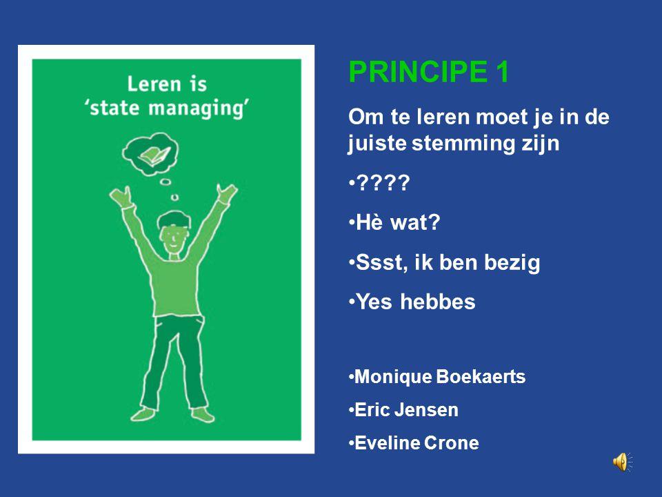Principe 1 PRINCIPE 1 Leren is 'state managing'