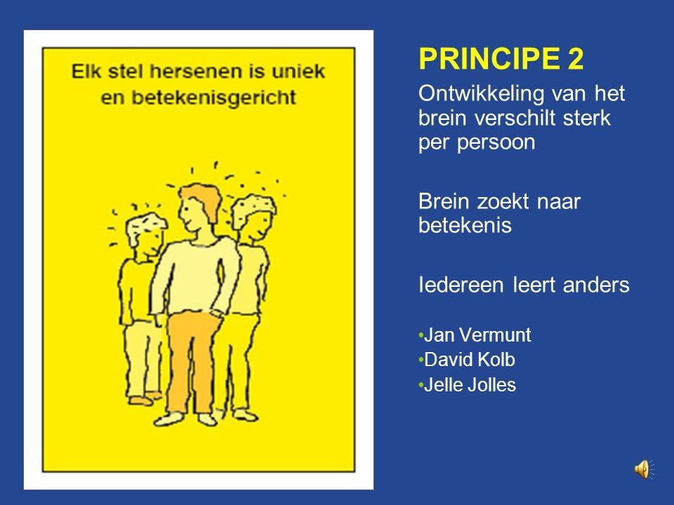 Principe 2 PRINCIPE 2. Ontwikkeling van het brein verschilt sterk per persoon. Brein zoekt naar betekenis.