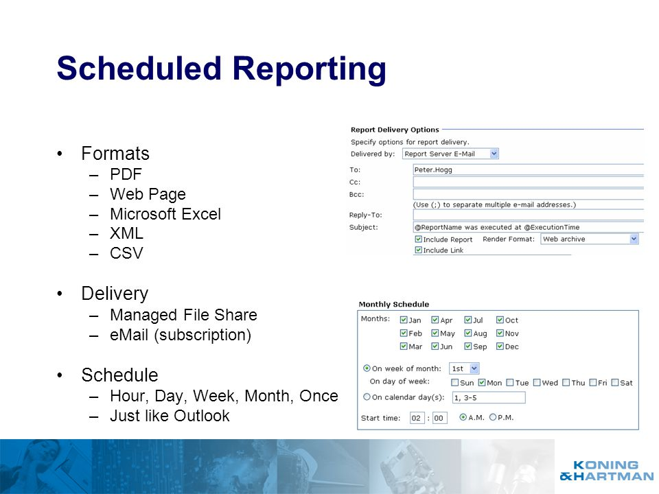 Scheduled Reporting Formats Delivery Schedule PDF Web Page